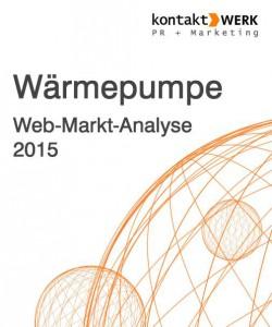 Webmarkt-Analyse